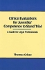 Clinical Evaluations for Juveniles' Competence to Stand Trial: A Guide for Legal Professionals